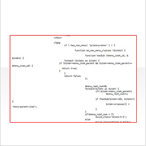 PDM-code